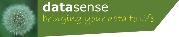 Datasense Company Logo