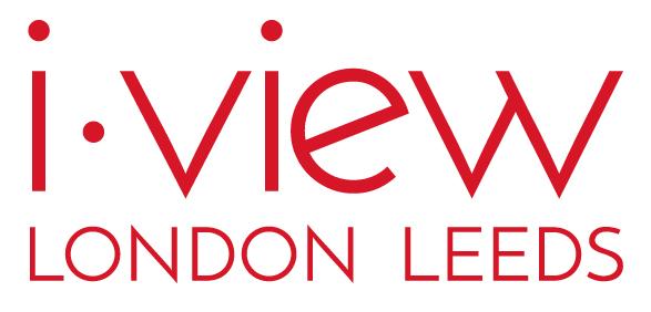 i-view  Company Logo