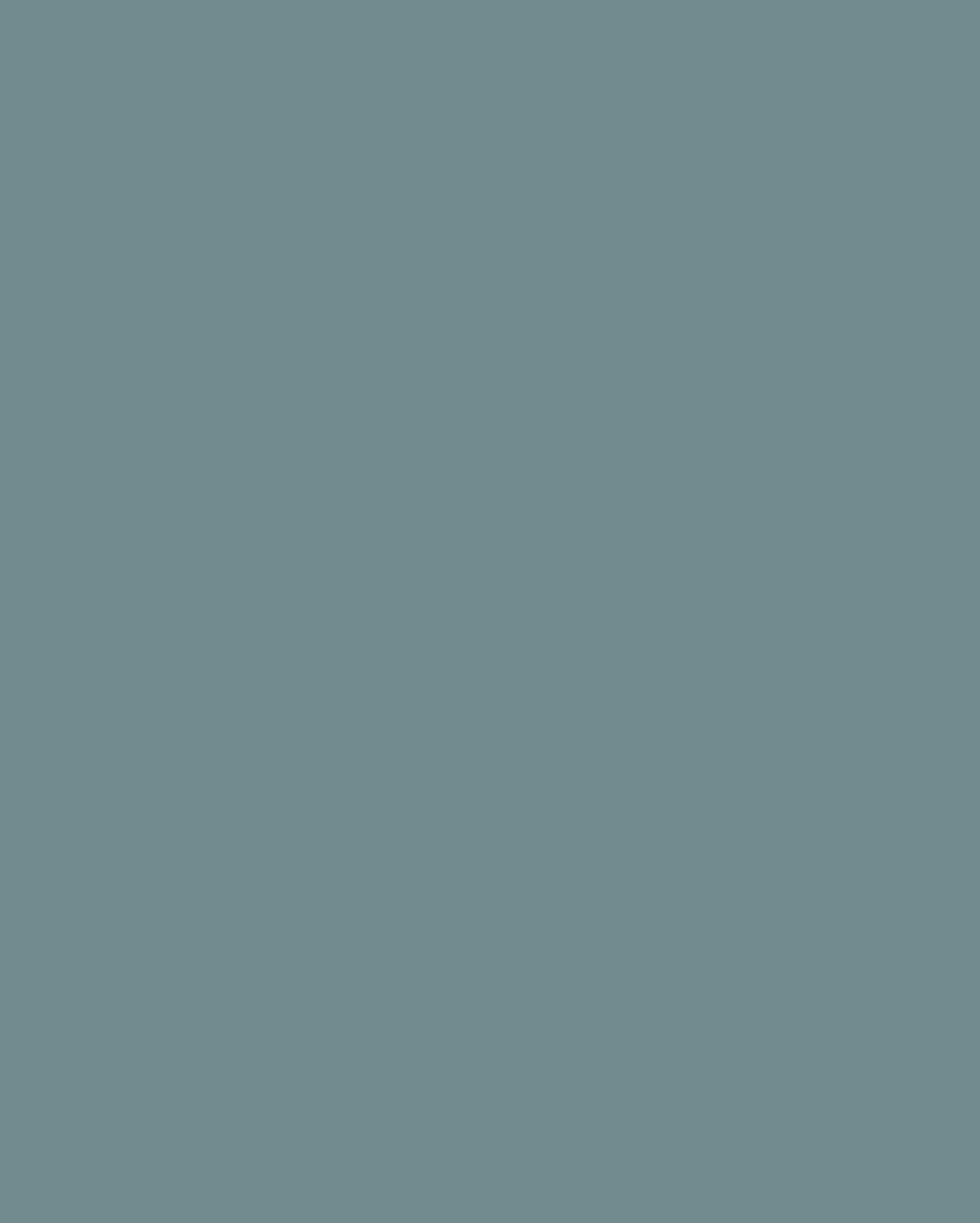 Walnut Unlimited Company Logo